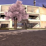 cod4, movie mods, sakura trees, z0rsy